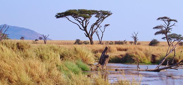 טיולים לאפריקה